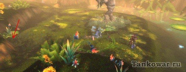 На испытании Вечного цветения Сухокожего выгоднее танковать там, где стрелка.